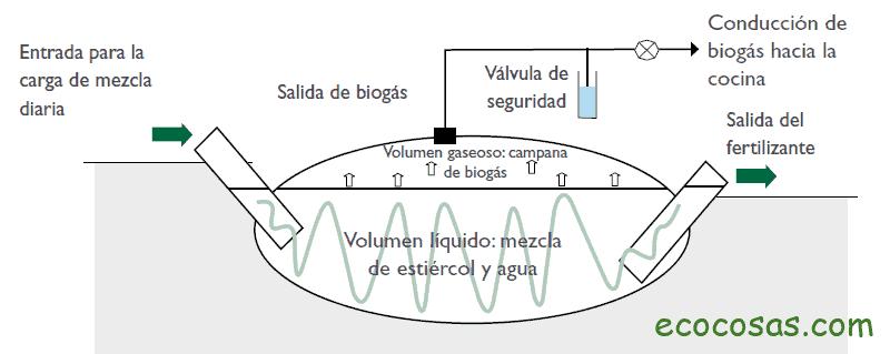 Biodigestor qué es y cómo hacer uno casero 1