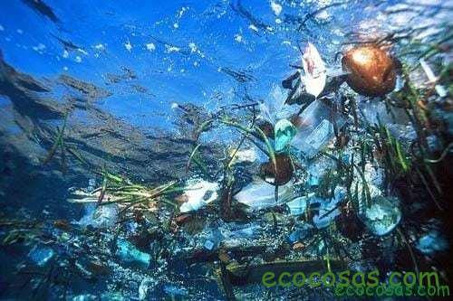 El problema de las bolsas de plástico 2