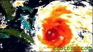 El lado bueno de los huracanes: pueden tener impacto positivo sobre ecosistemas 1