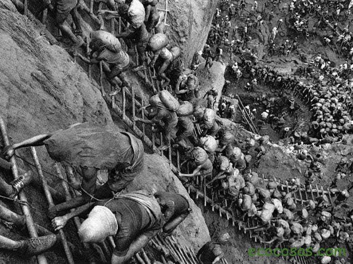 Los garimpeiros, depredadores sin frontera 6