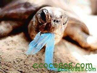 Pronto todos seremos Plástico 3