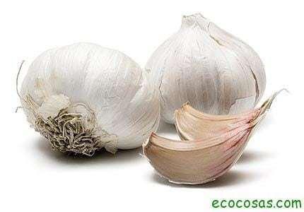 ajo Insecticida, repelente y fungicida, casero y ecológico
