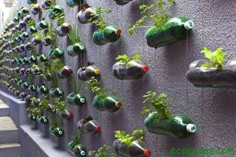 Macetas con botellas plásticas 2