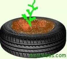pneu1 Cultivar patatas en neumáticos