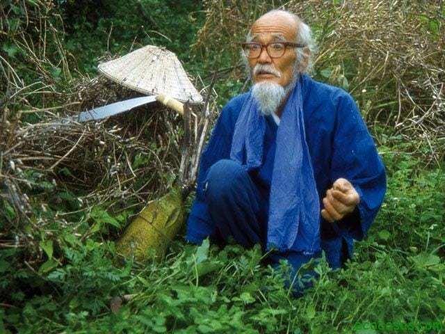 masanobu fukuoka Fukuoka, y la senda natural del cultivo