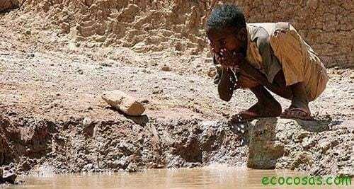 agua potable para todos Semillas milagrosas y arena para producir agua limpia y barata