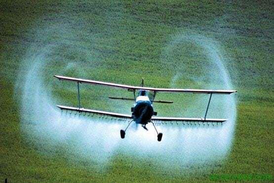 fumiga Roundup, es mas tóxico para el ADN humano que la mayoría de los venenos conocidos