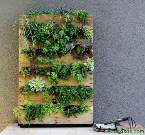 Jardín vertical reciclando un palet 1
