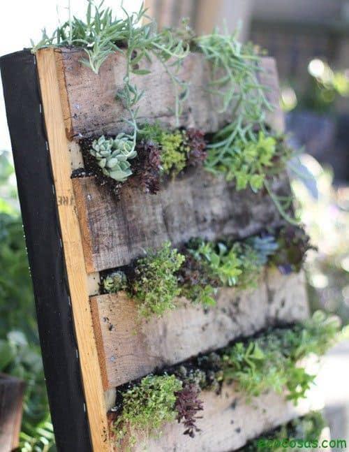 Jardín vertical reciclando un palet 11