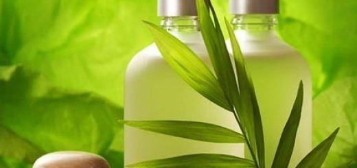 shampoo-natural