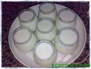 Yogur hecho en casa, barato, saludable y ecológico 2