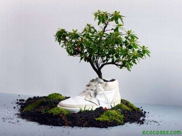 biodegradable sneaker 2fbia ¿Qué significa Biodegradable?