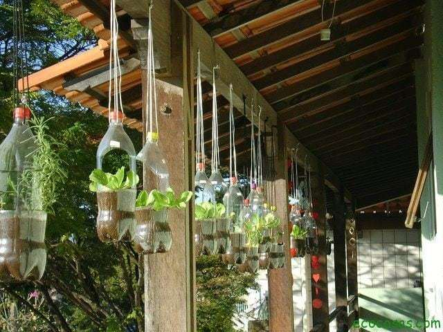 Macetas con botellas pl sticas ecocosas for 1000 ideas para el jardin