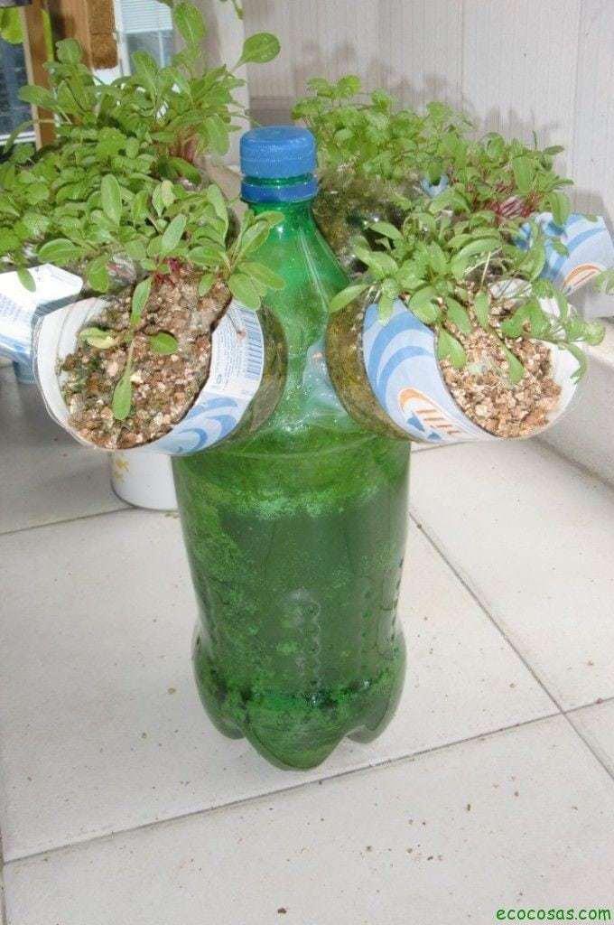 Macetas con botellas plásticas 5