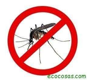 Repelentes naturales contra mosquitos 1