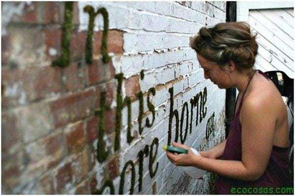Haz tu propio graffiti de musgo 1