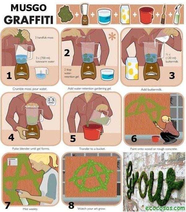 Haz tu propio graffiti de musgo 5