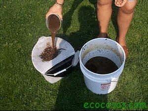 Té de compost 1
