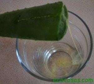Cómo hacer Gel de Aloe Vera 3