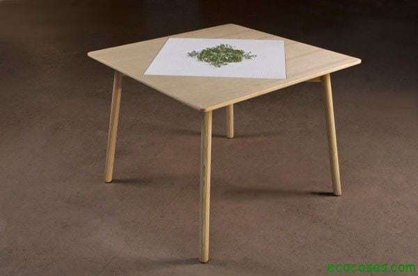 Diseño Verde 5