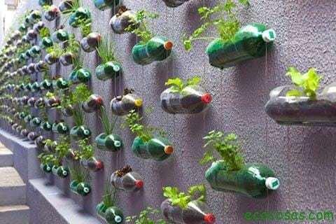 Reciclando nuestro jardín 9