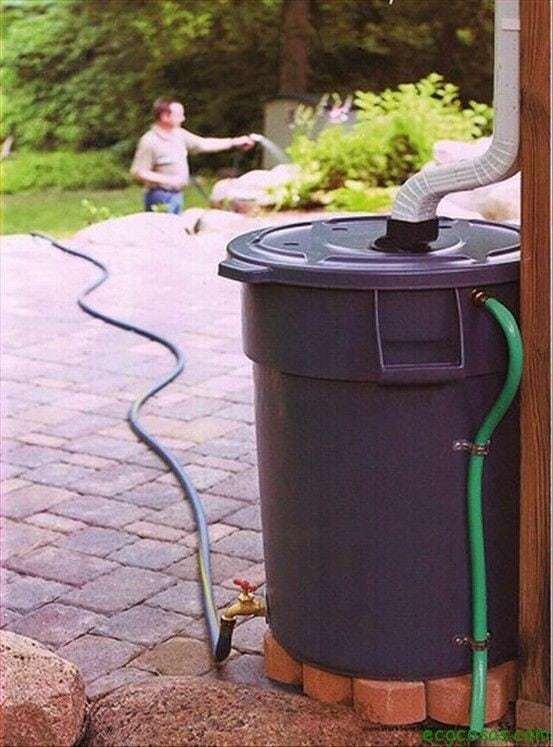 Reciclando nuestro jardín 2