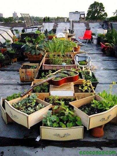 Reciclando nuestro jardín 16