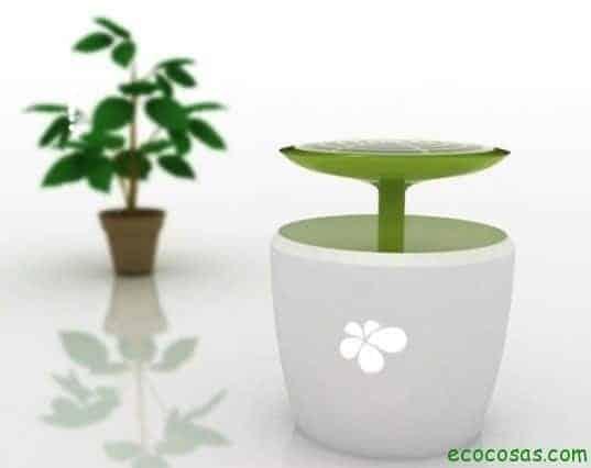 Diseño Verde 13