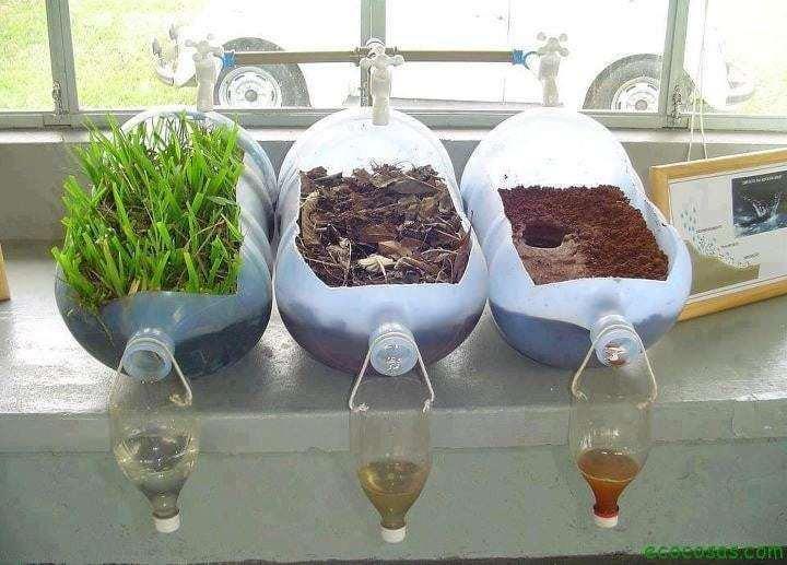La importancia de la vegetación demostrada con un simple experimento casero 5