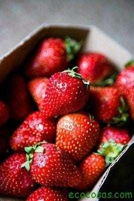 propiedades de las fresas