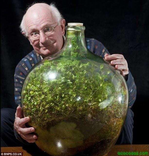 0 Todo un ecosistema en una botella