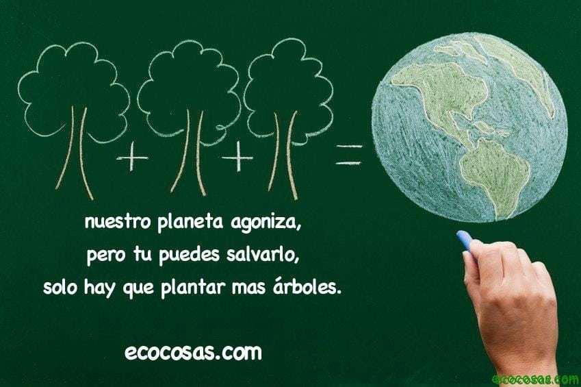 arboles Mas árboles para una Tierra agonizante