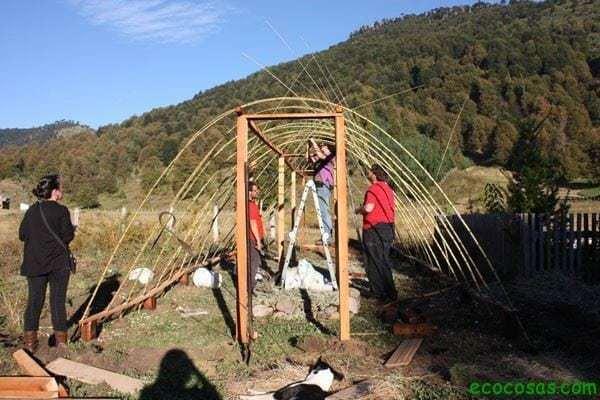 Invernadero con ca as ecocosas for Vivero estructura