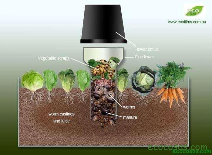 Ecología, Permacultura, Salud Natural, Plantas Medicinales, Como Cultivar, Energías renovables, Bioconstrucción y otros. 5