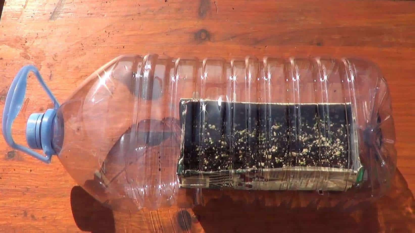 Como sembrar lechuga el semillero ecocosas - Mini invernadero casero ...