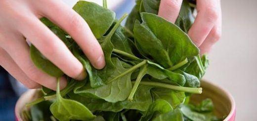 hojas-verdes-para-el-corazon1