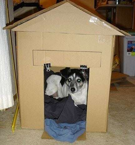 puppy_house_large