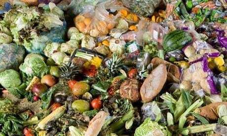 Waste (Documental) 3