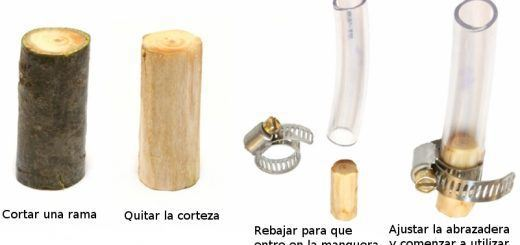 tree-branch-filter
