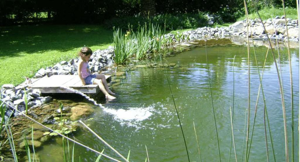Biopiscinas, piscinas ecológicas y sostenibles 1