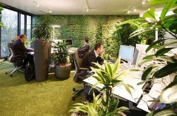 oficina-ecologica