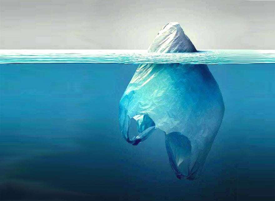El problema de las bolsas de plástico 8