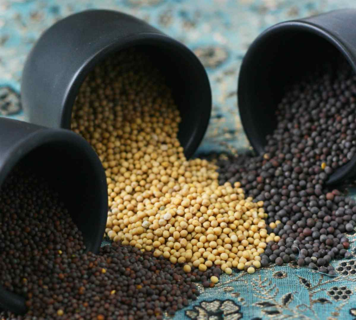 semillas mostaza