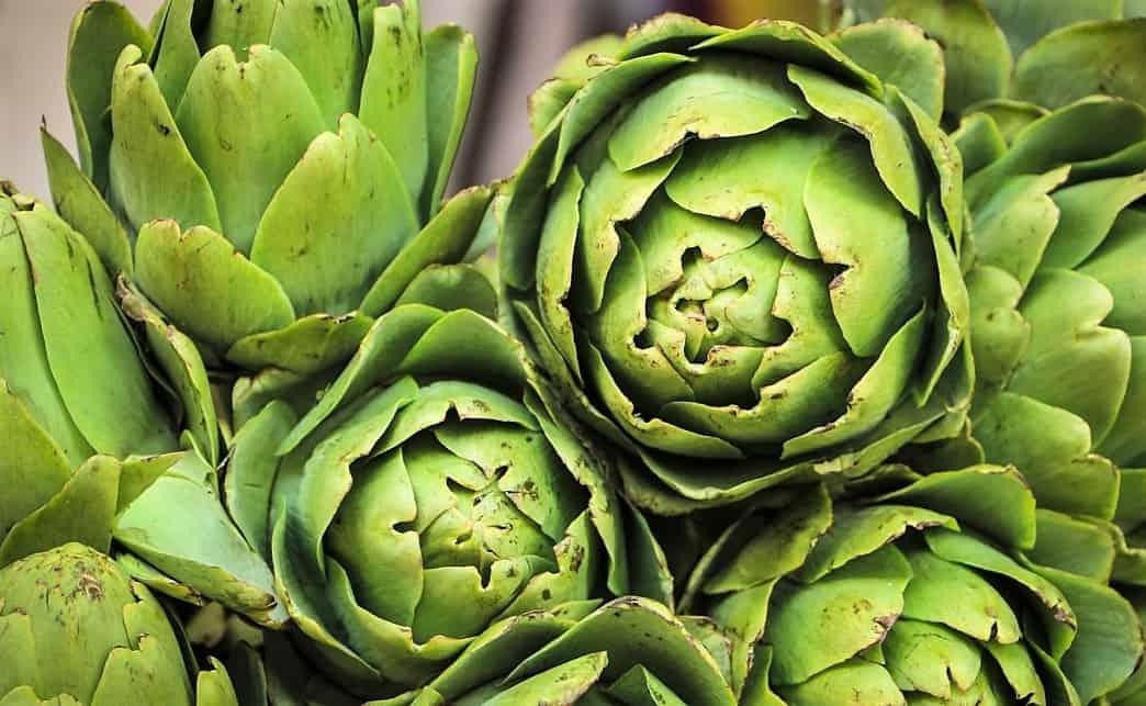 Usos de la alcachofa para adelgazar