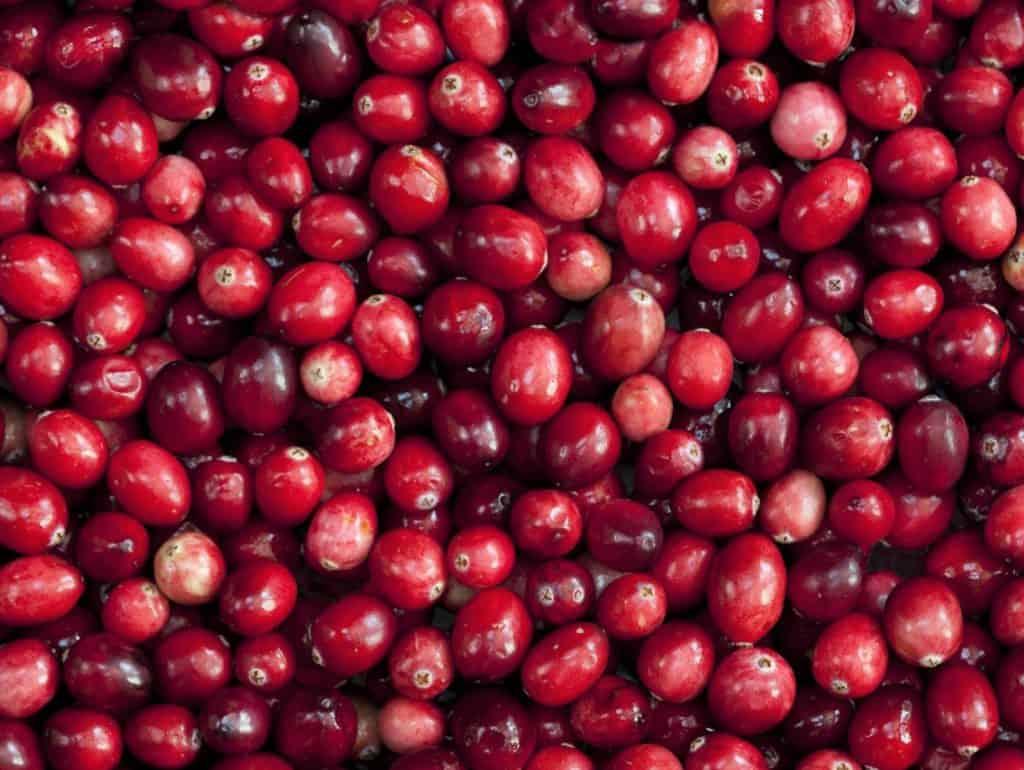 Arándano rojo. Propiedades, beneficios, usos y contraindicaciones 1