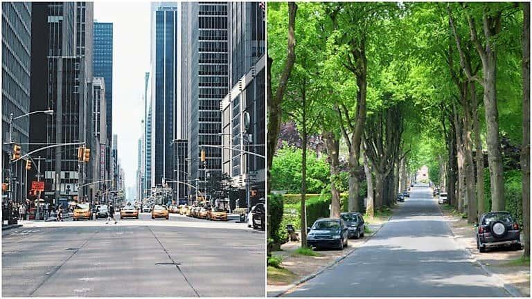 Cuántos más árboles nos rodean, menores son nuestros niveles de estrés 5