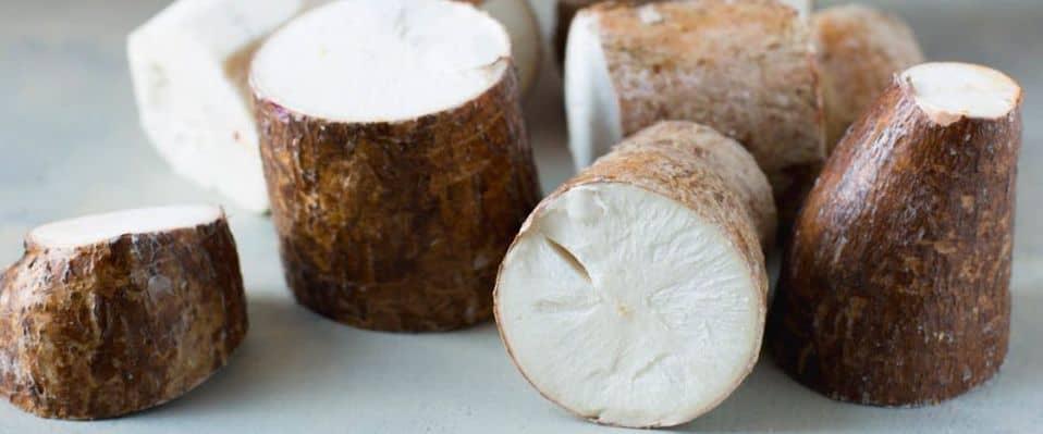 Yuca. Propiedades, beneficios y cómo cocinarla - Ecocosas