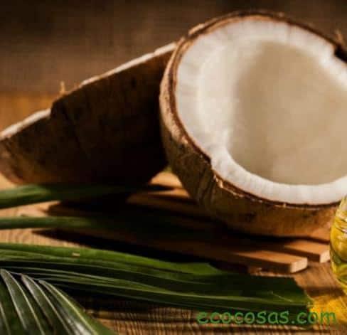 Aceite de coco: propiedades, beneficios, usos y todo lo que debes saber de este superalimento 1