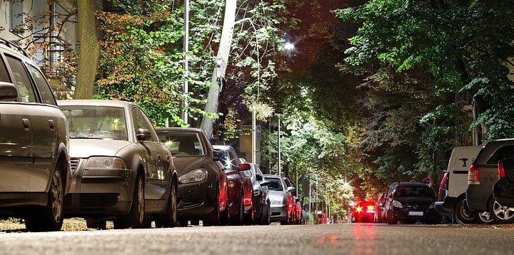 Las ciudades deben pensar en los árboles cómo infraestructura de Salud Pública 1