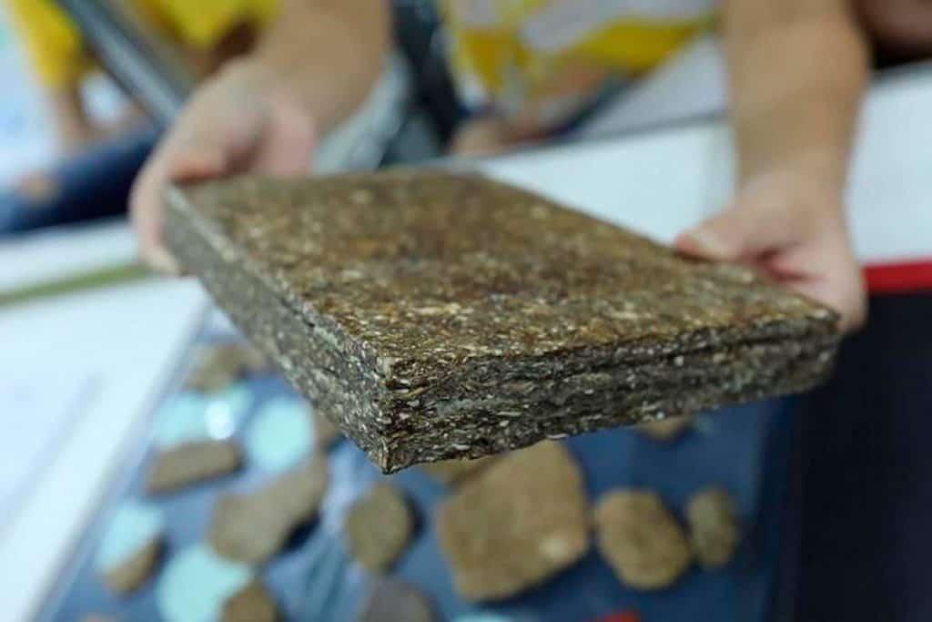 Estudiantes crean madera de Yuca 1